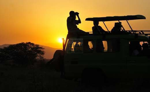 Game drives in the Kidepo Valley, uganda wildlife safaris, tour Uganda