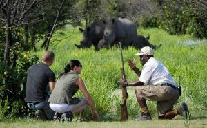 6 days Uganda wildlife safari Kidepo Valley & Murchison Falls National Parks